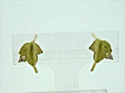 Photo1: K18YG DIA EARRING